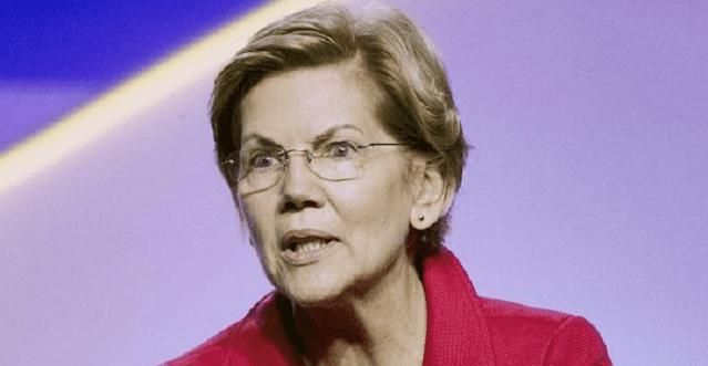 "Elizabeth Warren's campaign volunteer fellowship program is ""deceptive"" and ""exploitative"""